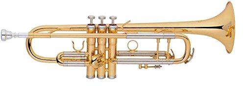 extreme-jbtr-04-tromba-professionale-in-sib-corpo-in-ottone-valvole-monel-anello-aggiustamento-slide