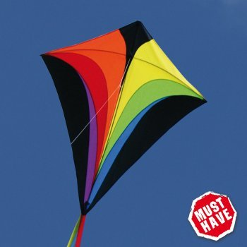Einleiner-Drachen - Eddy XL RAINBOW MUSTHAVE - für Kinder ab 6 Jahren - Abmessung: 90x100cm - inkl. 100m Drachenschnur und Streifenschwänze