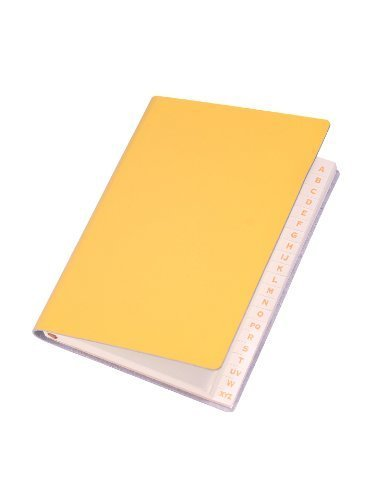 paperthinks-mango-recycled-leather-slim-address-book-35-x-5-inches-pt93761-by-paperthinks