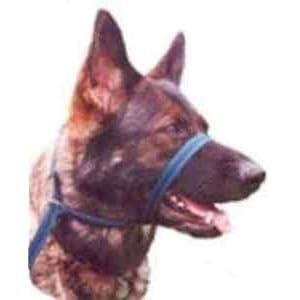 Gencon-All-In-1-Clip-To-Collar-Dog-HeadcollarHalter-Lead-In-One-Black