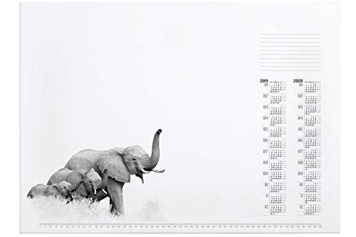 Durable Calendario bloque Diseño African Wildlife 732315-Vade (Papel con diseño de elefante y 2Años Calendario, 570x 410mm