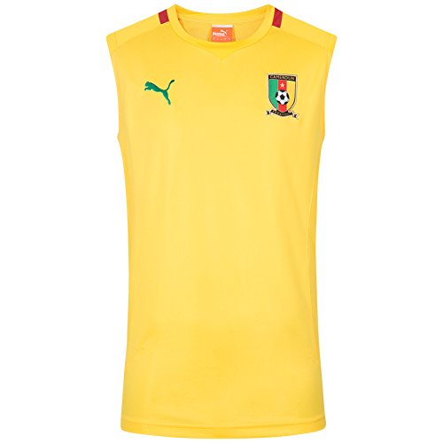 Puma Kamerun Herren Trainings Tank-Top 739533-05
