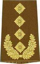 Originalae Bundeswehr Rangschlaufen Schulterabzeichen verschiedene Farben, alle Heer Dienstgrade (General, Oliv)