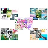 Lot de 50cartes postales One-Designs individuels