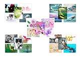 Mixed Pack eine–Postkarten von 50Individuelle Designs