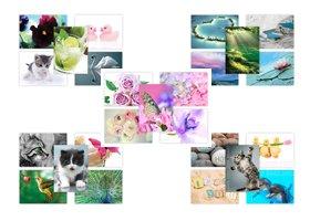 Gemischte Postkarten Großer Value Multipack Bilder von der Natur inspiriert -