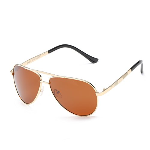 Vast HD TAC Polarized Aviator Men Sunglasses (POLO_2026_GOLD_BROWN)