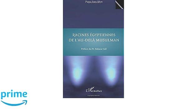 Racines égyptiennes de lau-delà musulman (French Edition)