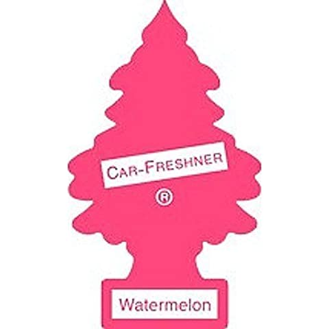 Little Trees Freshner 10320 Car Air Freshener-Profumo