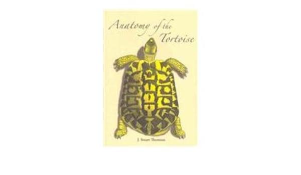 The Anatomy of the Tortoise: Amazon.co.uk: James Stuart Thomson ...