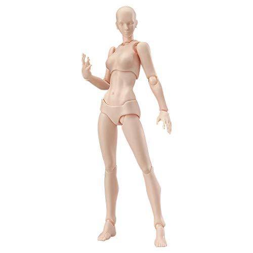 YA-Uzeun Malerei-Requisiten, Kunst-Kunststoff, PVC-Körper, Simulationsfigur, Modell menschlicher Mannequin, Mann und Frau, Kits für Künstler, Aktion, Maler, Skizzierer, (B: Beige (weiblich)) Pole Mount Adapter Kit
