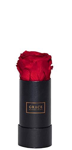 GRACE Flowerbox Royal Red | 1 echte rote Rose | 1-3 Jahre haltbare Infinity Rosen | Bekannt aus Die Höhle der Löwen