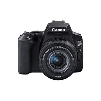 Canon EOS 250D + Canon EF-s 18-55mm f/4-5.6 IS STM Lens: Amazon.es ...