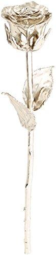 St. Leonhard Ewige Rose: Echte Rose für immer schön, mit 18-karätigem* Platin veredelt, 28 cm (Schmuck-Rose)