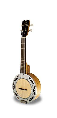 apc-ukus-bj100-ukulele-banjo