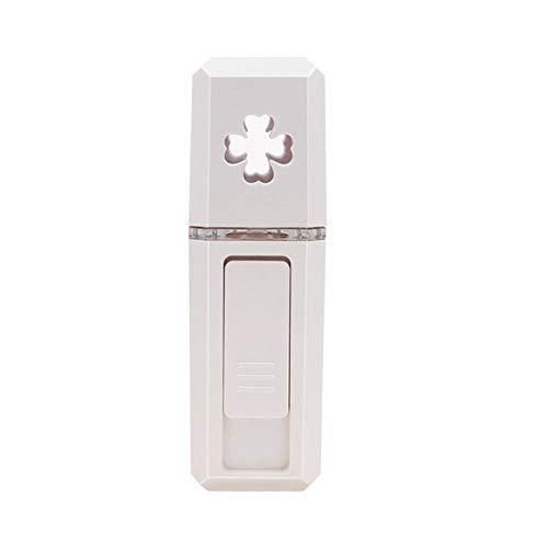 fishStile tenuto in Mano dello spruzzo Fredda Contatore dell'Acqua di Bellezza facciale umidificatore USB Ricaricabile Portatile nanometro vaporizzatore Viso, Bianco
