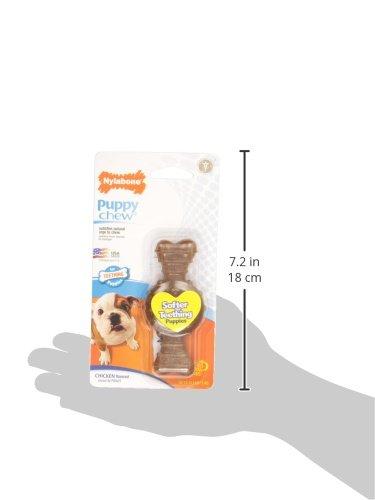 Nylabone-Puppy-Petite-Ring-Bone