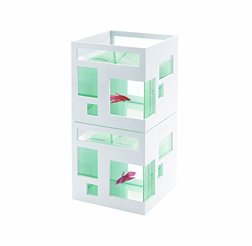 GZ GREEN Acrylic Aquarium.. Best fish tank for home ( unbreakable )