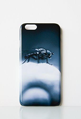 ne 6 Fliege ()