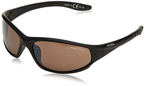 alpina-wylder-sunglasses-black