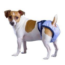 PadVital waschbare Hundewindel Größe S für Rüden und Hündinnen