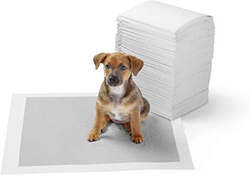Imagen de Empapadores Para Perros Amazonbasics por menos de 20 euros.