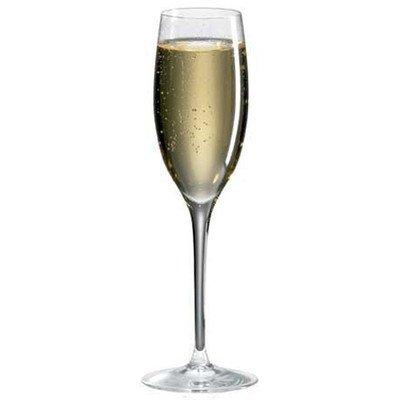 Classics Champagner Flöte (Set von 4)