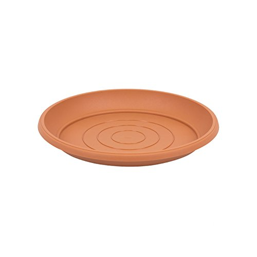universal flower pot plastic saucers, 25 cm pack of 1