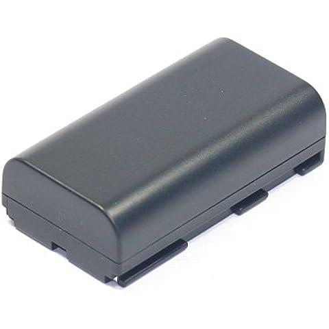 Batteria per Canon XF100 XL1 XH-A1 XM2 XL2 XM1 XL1S XF105 XL-H1 XH-G1 E-30 V60Hi MV1 V420 (2200mAh)
