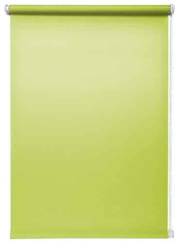 Beyond Drape Estor de luz Diurna Verde 80 x 150 cm sin taladrar, fijación sin Agujeros, Estor de protección Visual, Estor Enrollable