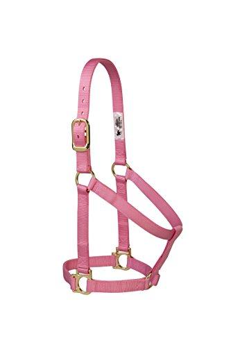 Weaver Leather 35-7404-TU Einfacher unverstellbarer Halfter, 25 mm für kleine Pferde, Türkis, 35-7406-PK, Rose, L Horse -