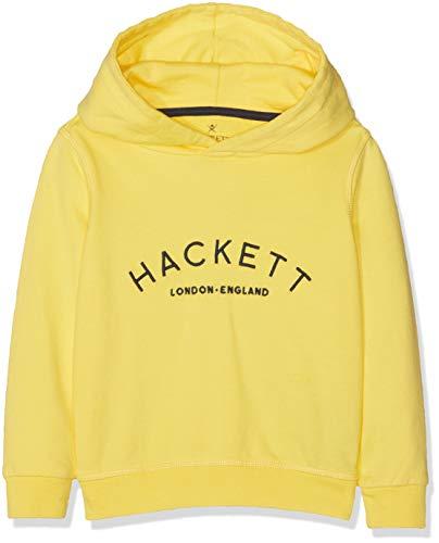 Hackett Mr Class HD Sudadera
