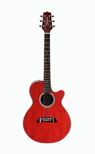 TAKAMINE EF261SAN ANTIQUE GLOSS + KOFFER Elektroakustische Gitarren Folk Elektro-Akustik