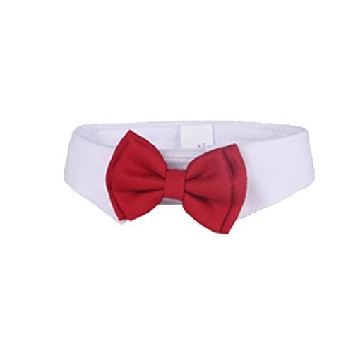 QHGstore Netter Welpen Katze Art und Weisebowknot Fliege Krawatte Kleidung für kleinen Hund L -