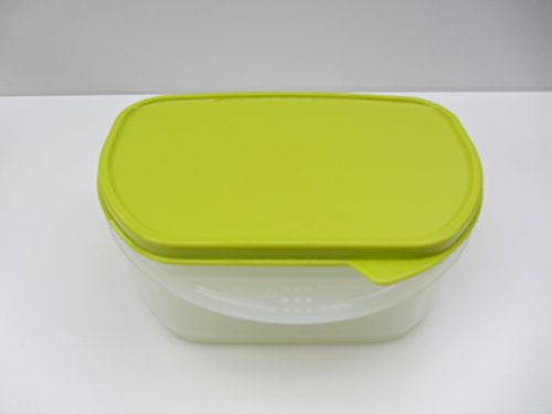 Kühlschrank Box : Tragbarer kühlschrank grau frigocat indel b