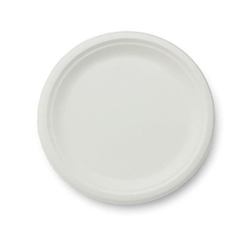 Preisvergleich Produktbild Asean Gesellschaft P005 10-Zoll-Platte - 500 St-ck