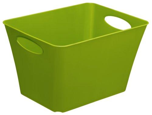 Rotho Allzweckbox Living aus Kunststoff, universell einsetzbar als Aufbewahrungsbox in Kinderzimmer, Büro, Bad, Wohnzimmer etc, 24 l, ca. 43x32x26 cm (LxBxH), grün, auch andere Farben verfügbar