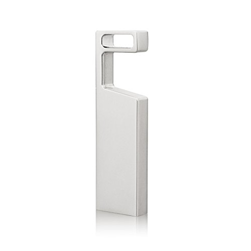 RAOYI Memoria Flash USB 64GB Pendrive 2.0 USB Metal