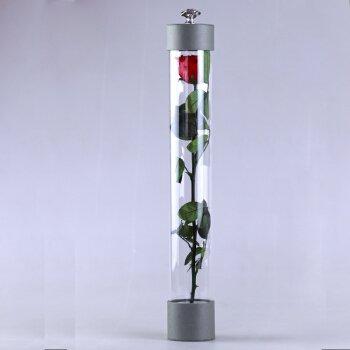 HOOM-Ewige Blume Rose Mädchen Geburtstag Geschenk Kreativ floralen Ornamenten Weihnachten