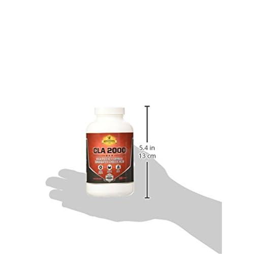 31m5p0Il3gL. SS500  - Mesomorph CLA 3000: Top Weight Loss & Fat Burner CLA Supplement | All-Natural Maximum Strength Plant-Derived Conjugated Linoleic Acid CLA Safflower Oil For Women & Men | 120 Softgels