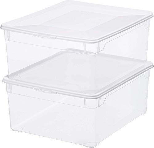 Rotho 2er Set Clear Box Sweater 18 L Deckel-QR-Code AppMyBox-2 x 18 L. Volumen-(LxBxH) 40x33.5x17 cm-transparent-stapelbar-Kunststoff/Plastik (PP) Aufbewahrungsbox, Gross, 2-Einheiten
