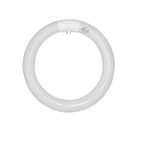 Bulk Hardware BH02358 Runde Triphosphor-Neonröhre, 32 W, T9 4-Stift, Weiß (32w-befestigung)
