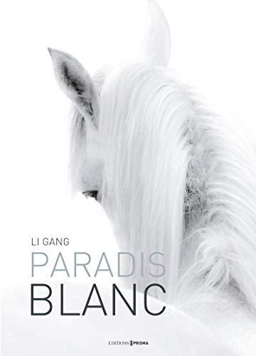 Paradis blanc par Li Gang