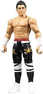 WWE Figura básica de acción, luchador T.J. Perkins (Mattel FMD44)