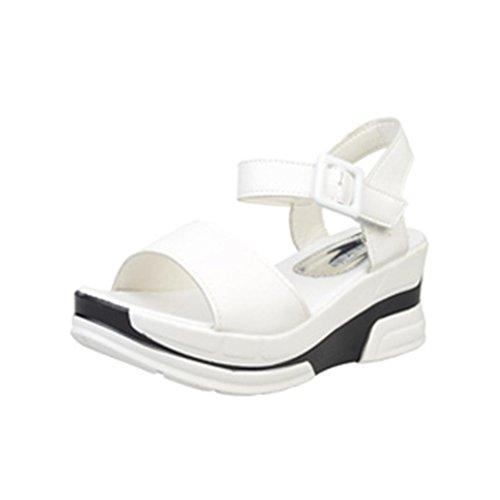 Yesmile Sandalias Para Mujer Zapatos Casual de Mujer Sandalias de Verano Para Fiesta y Boda Sandalias Peep-Toe Zapatos Bajos Zapatillas de Romanas Chanclas Para Damas (39, Blanco)
