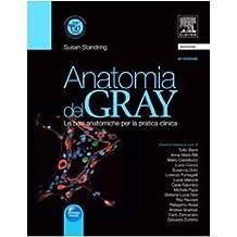 Anatomia del Gray. Le basi anatomiche per la pratica clinica (2 vol. indivisibili)