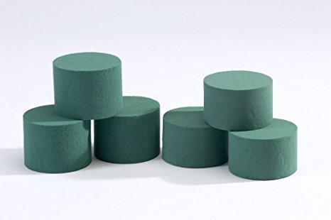 Nass-schaum (8 x Oasis Ideal Rund Zylinder Nass Schaum für Florist Blumenmuster Basteln Blumen Floristik Designs & Ausstellungen)