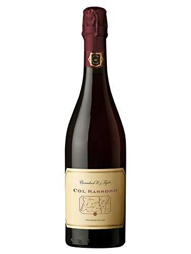 COL SASSOSO Lambrusco Grasparossa di Castelvetro DOC Secco - Cavicchioli - Vino rosso frizzante 2018 - Bottiglia 750 ml