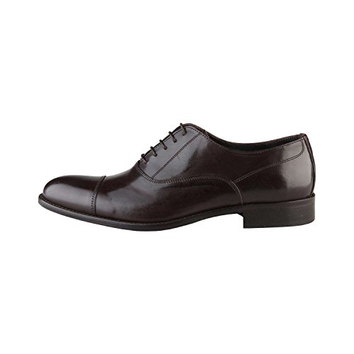 Made in Italia Camillo, Oxfords Homme