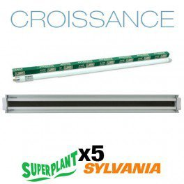 Galleria fotografica Kit crescita t5ho 10 x 54 W 6500 K Plug and Play – SuperPlant & Sylvania